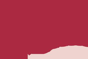 Niedorpsfanfare Logo